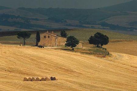 Aree rurali, un bando del Gal Appennino per le imprese extra agricole